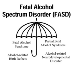 FASD UMbrella